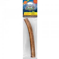 Рог северного оленя (XL)